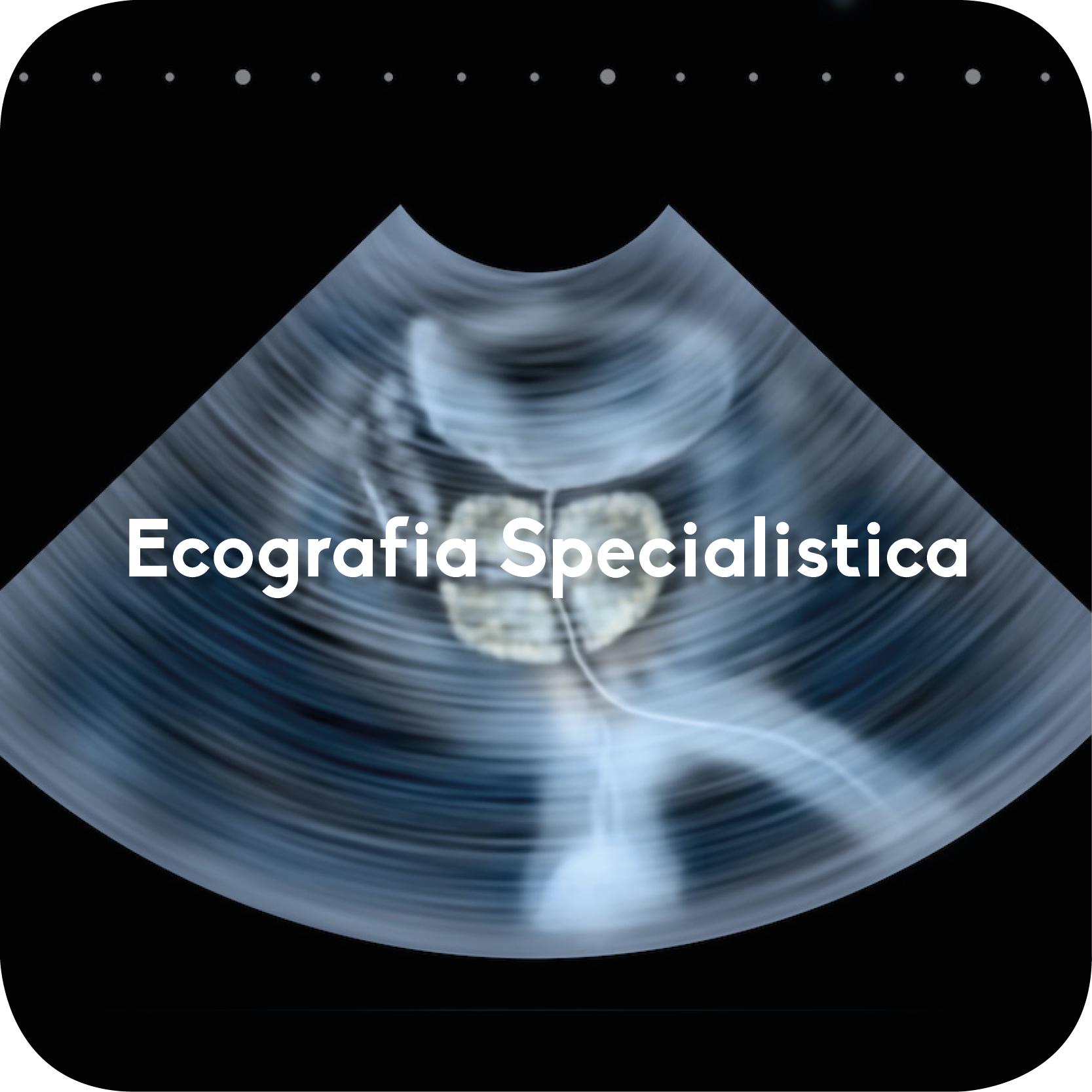 ecografia specialistica